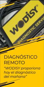 Diagnóstico remoto - WODISY proporciona hoy el diagnóstico del mañana